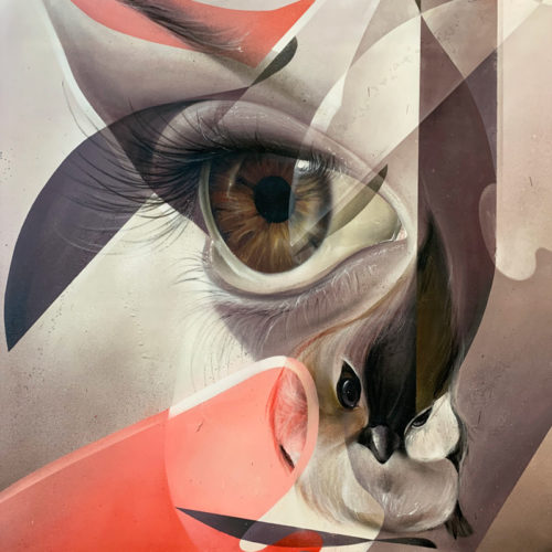 street art painting on canvas brown eye and bird